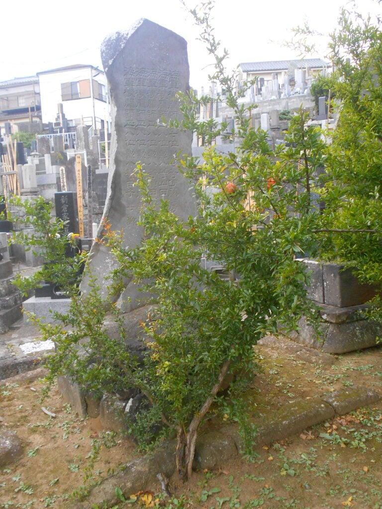 龍本寺のお墓