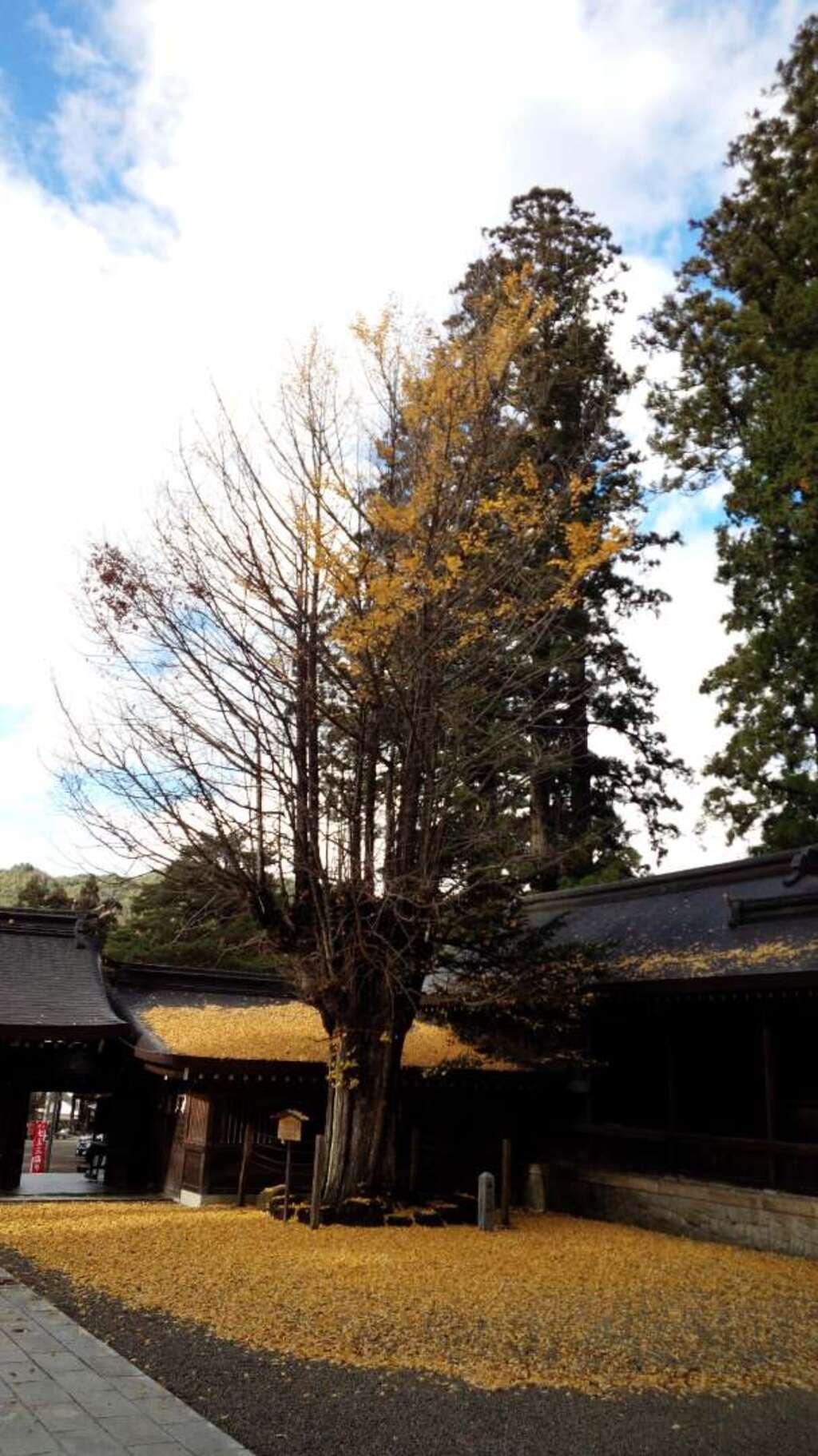 飛騨一宮水無神社の建物その他