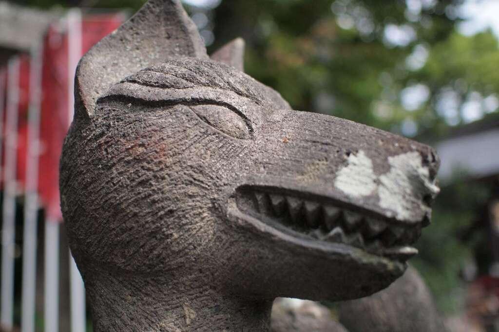 安積國造神社の狛犬