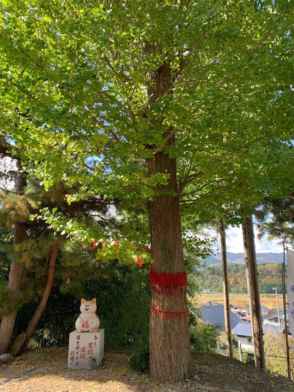 鹿角八坂神社の自然