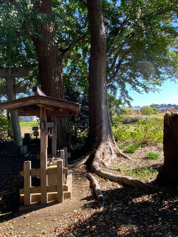 亀井神社の建物その他