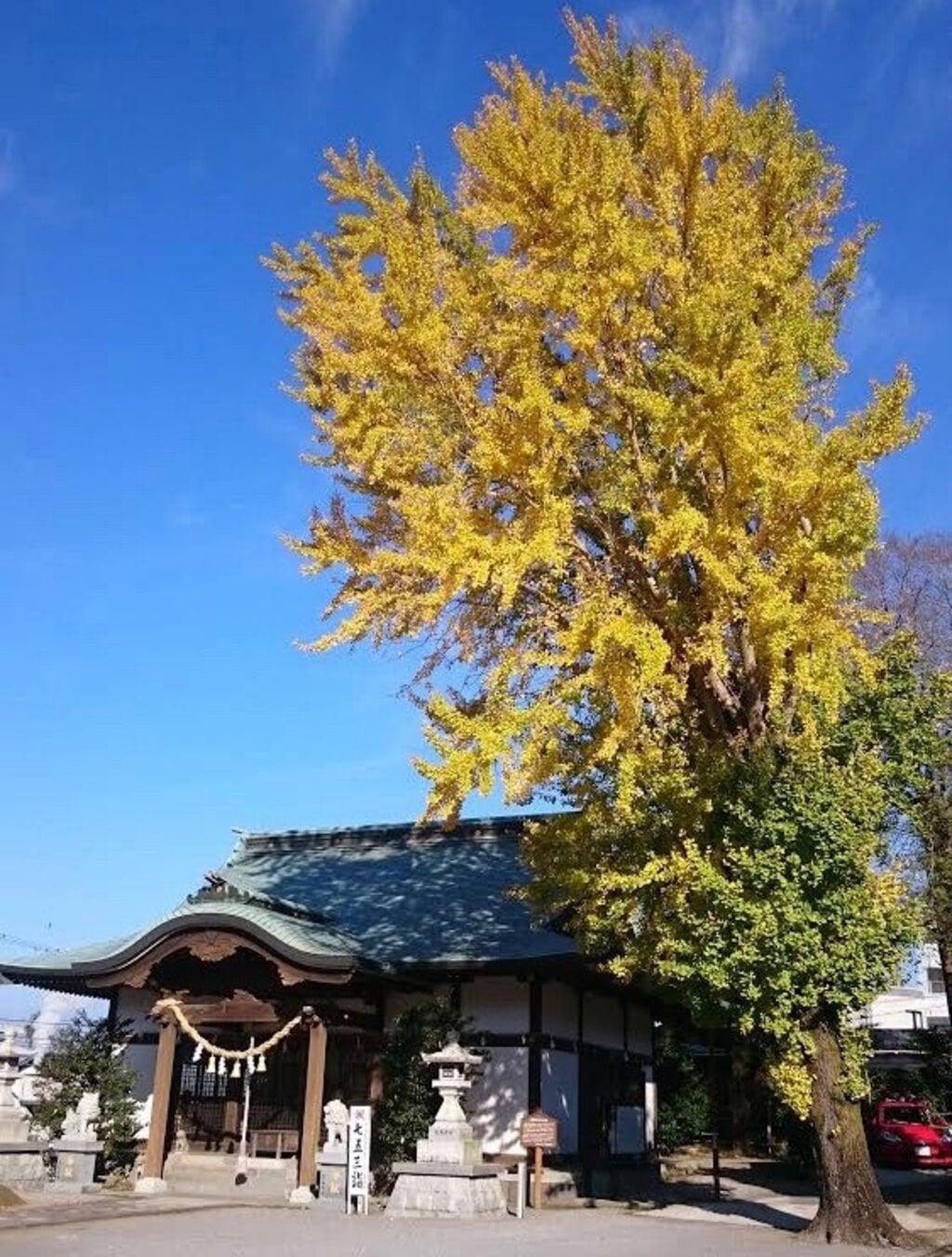 小浜神社(長崎県)