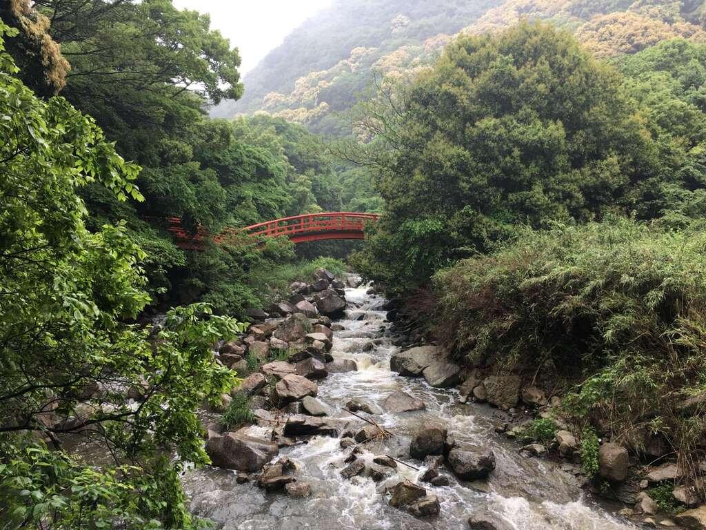太山寺の自然