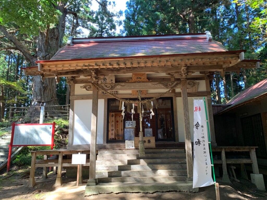 戸隠神社の本殿