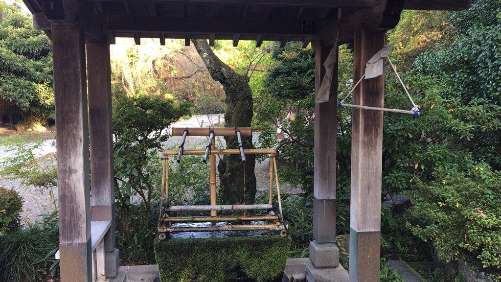 達磨寺の手水