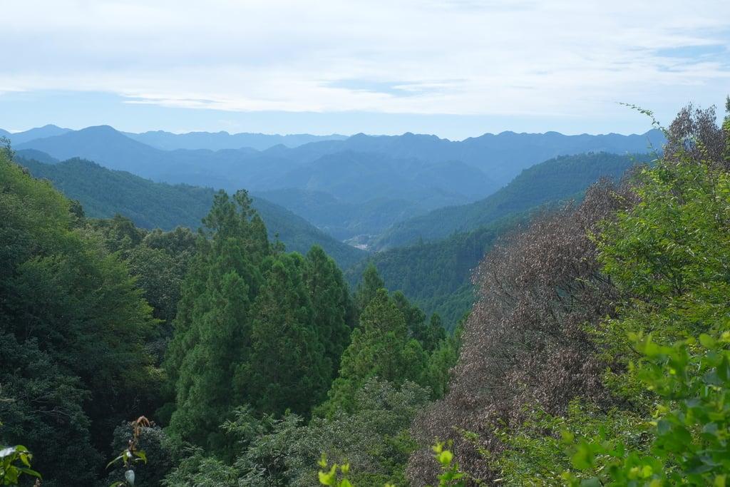 熊野本宮大社の景色