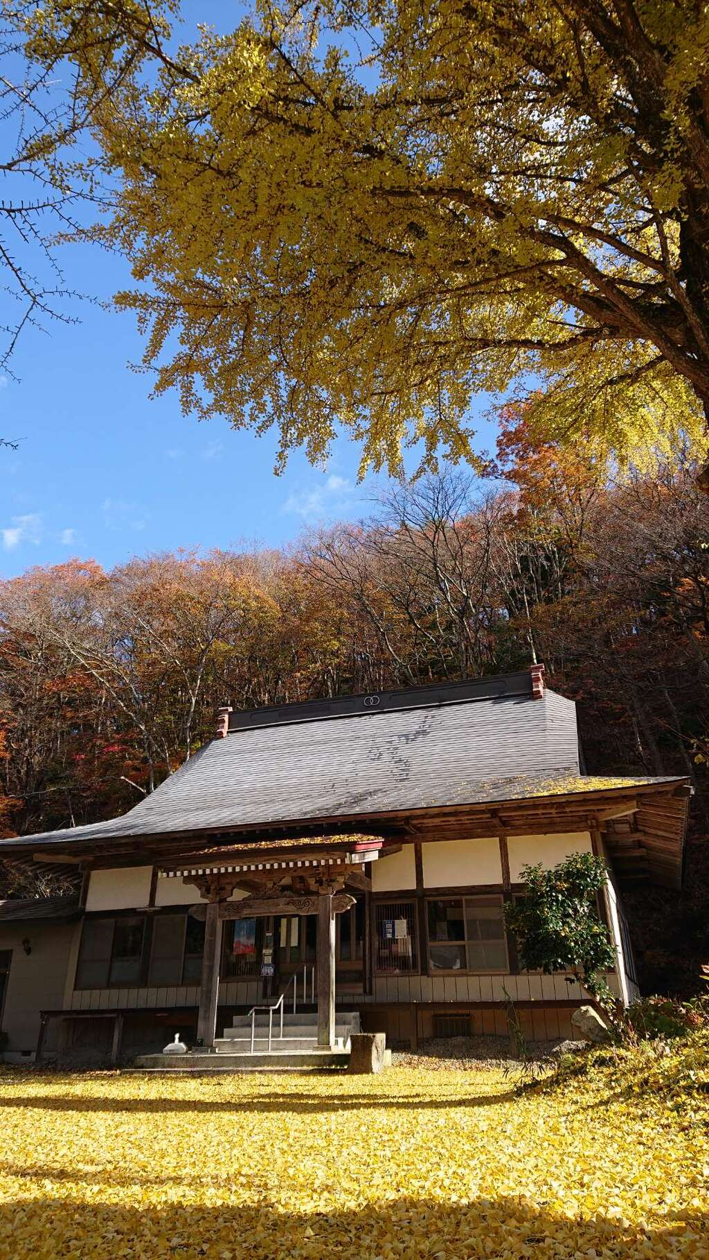 壽徳寺 じゅとくじの本殿