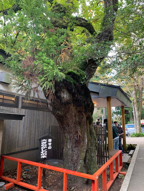 箱根神社(神奈川県)