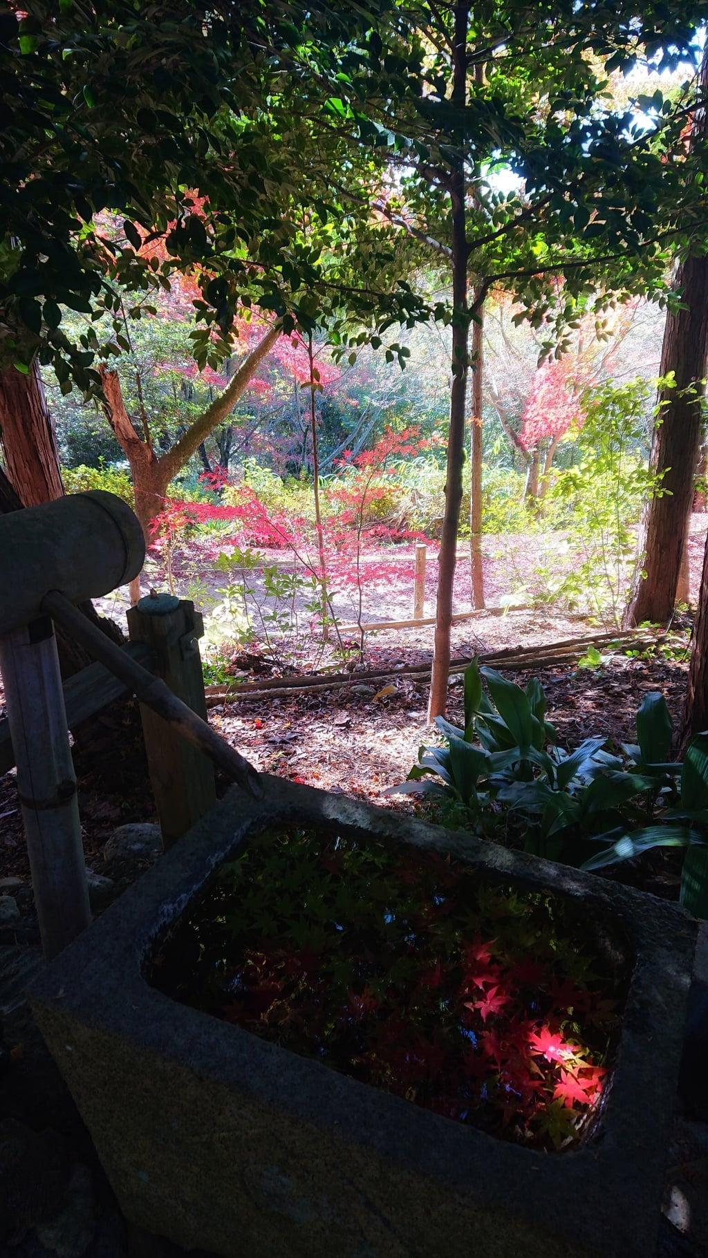 玉野御嶽神社の手水