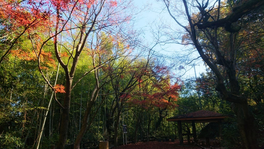 玉野御嶽神社の景色