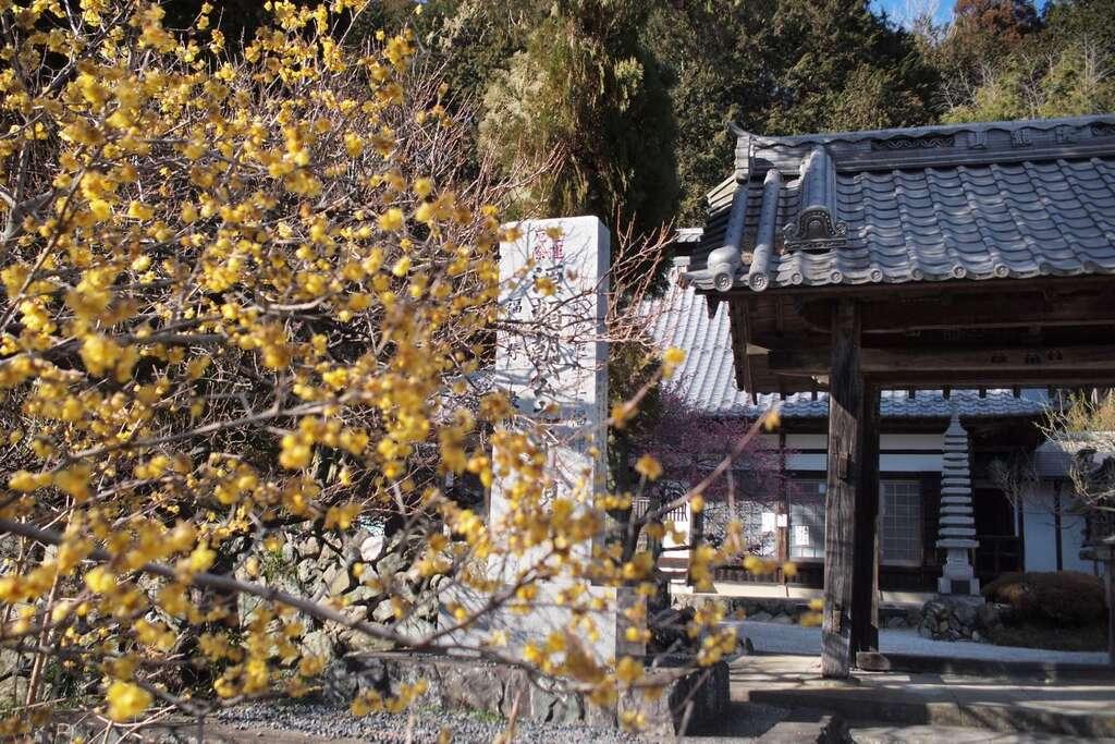 最勝寺の自然