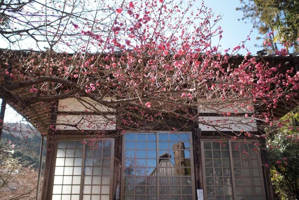 最勝寺(埼玉県)