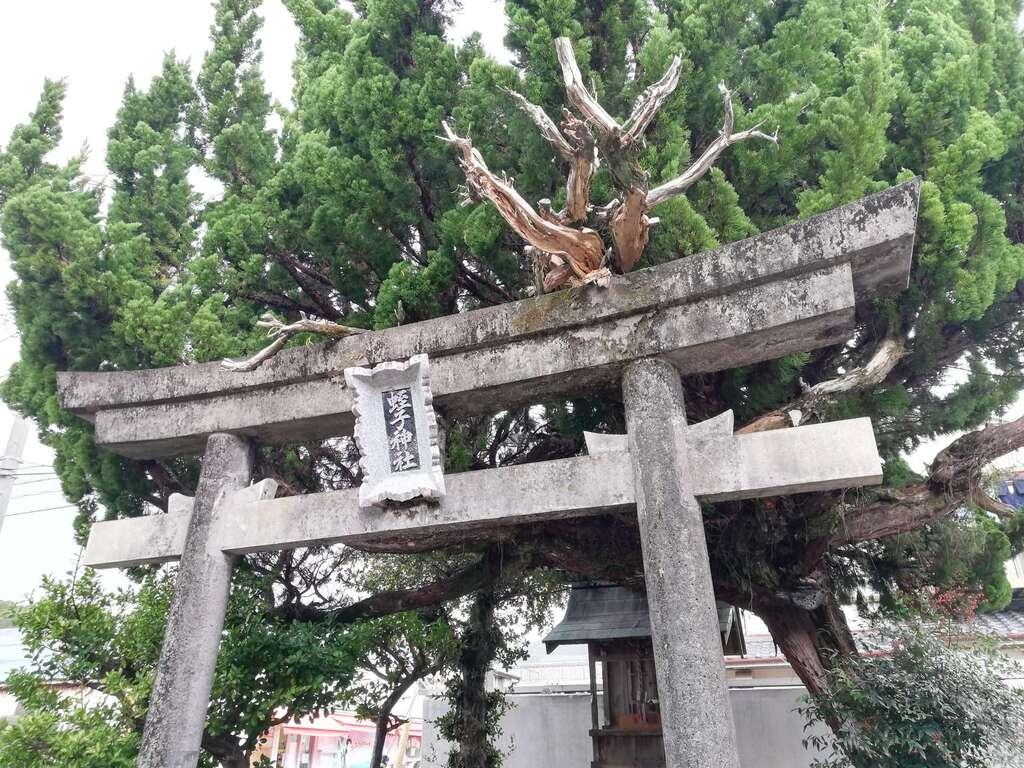 蛭子神社の鳥居