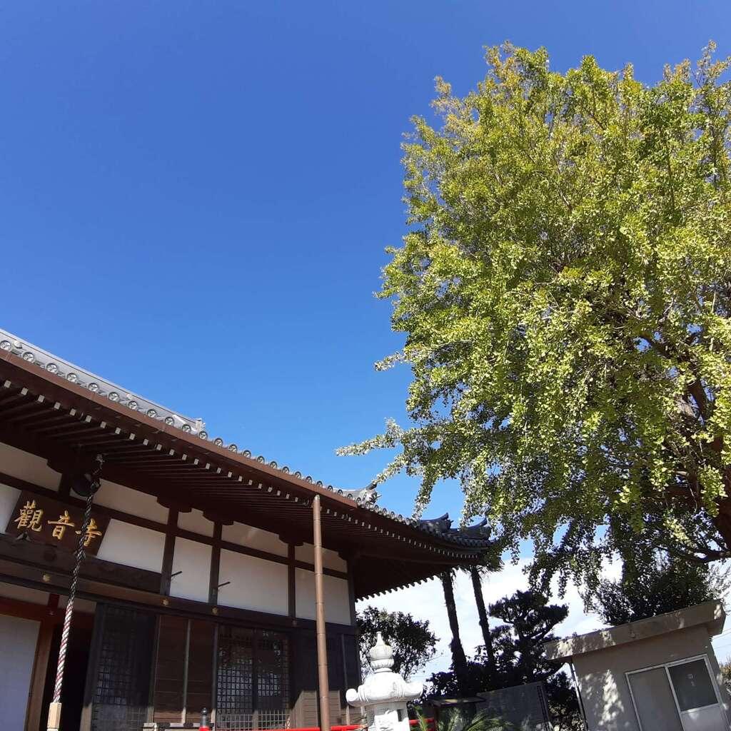 法話と天井絵の寺 觀音寺の本殿