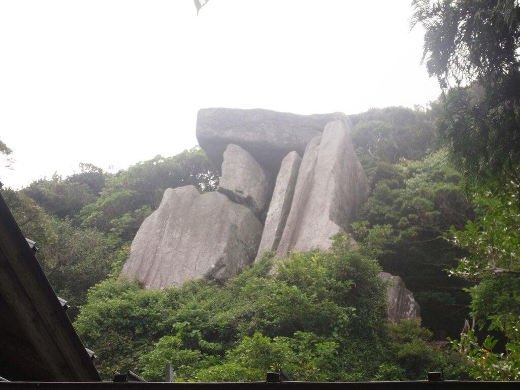 沖ノ神島神社の自然