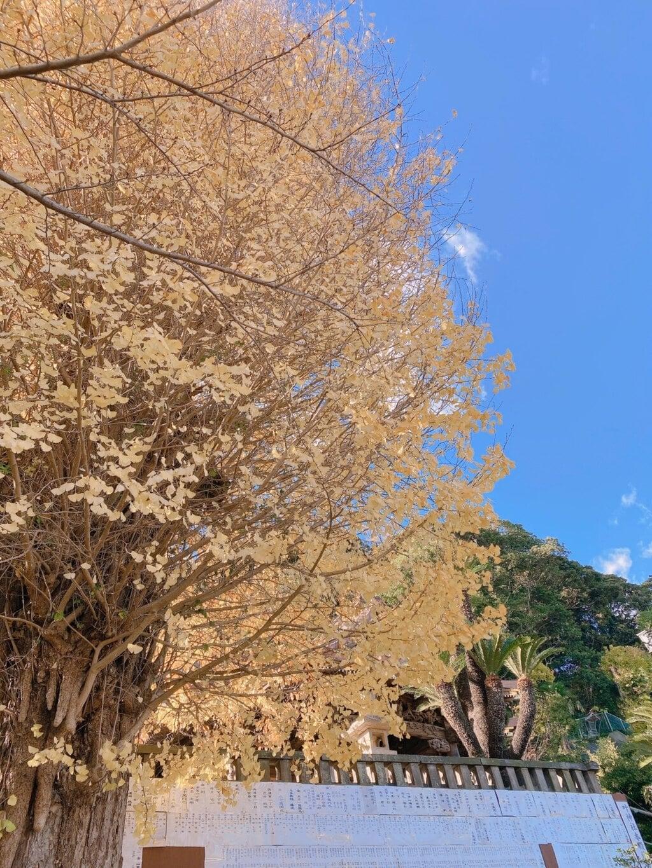 叶神社 (西叶神社)の自然