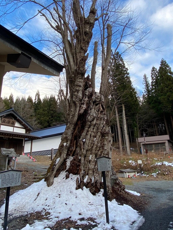 天台寺の自然