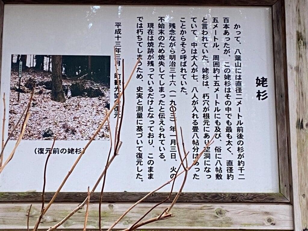 天台寺の建物その他