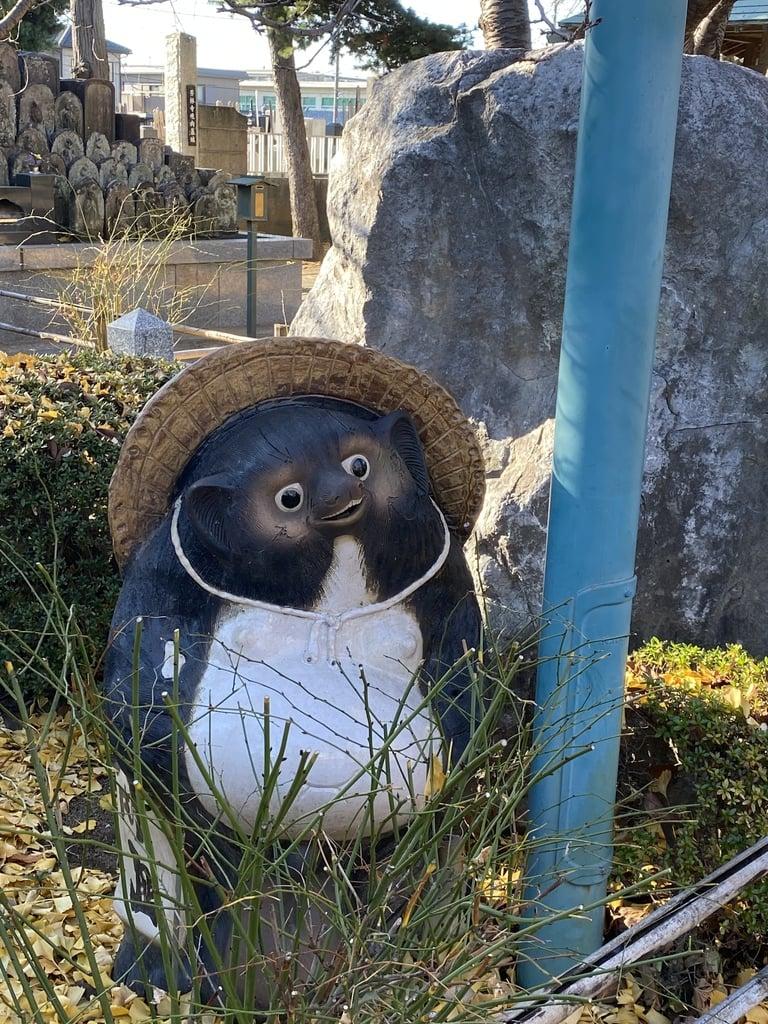 芳林寺の狛犬