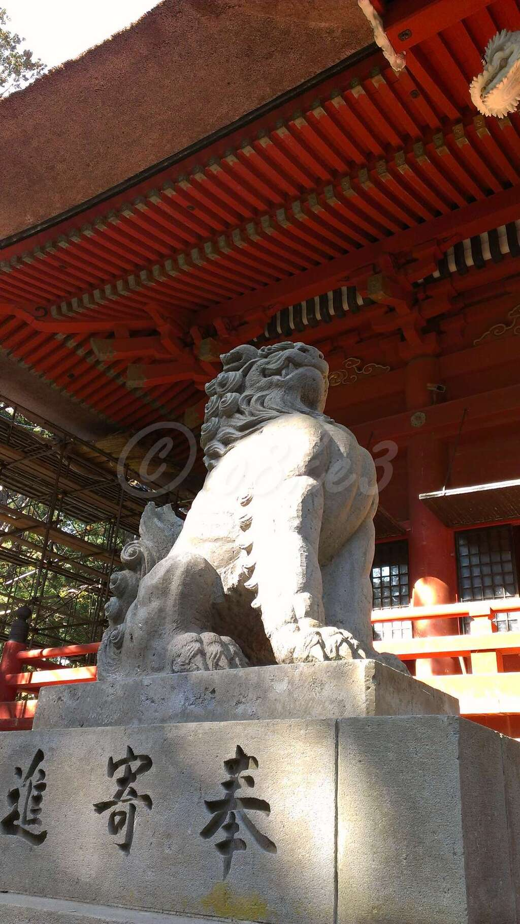 出羽神社(出羽三山神社)~三神合祭殿~の狛犬