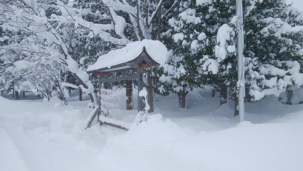風連神社の景色