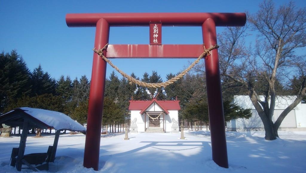 止別神社の鳥居