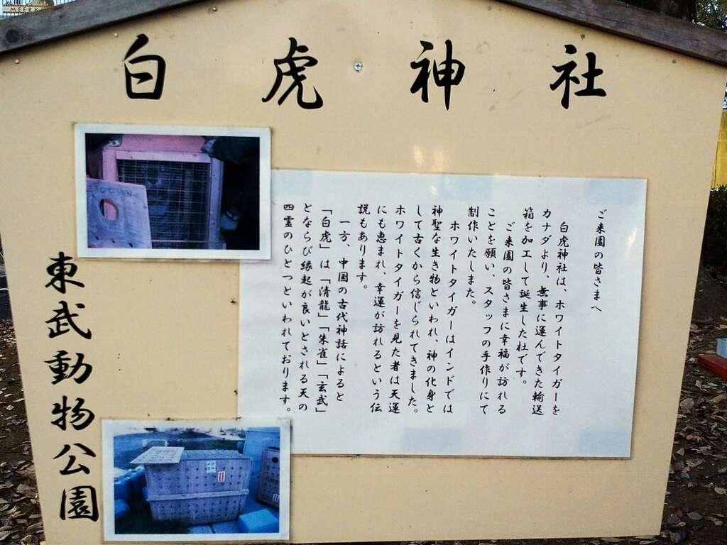 白虎神社の歴史