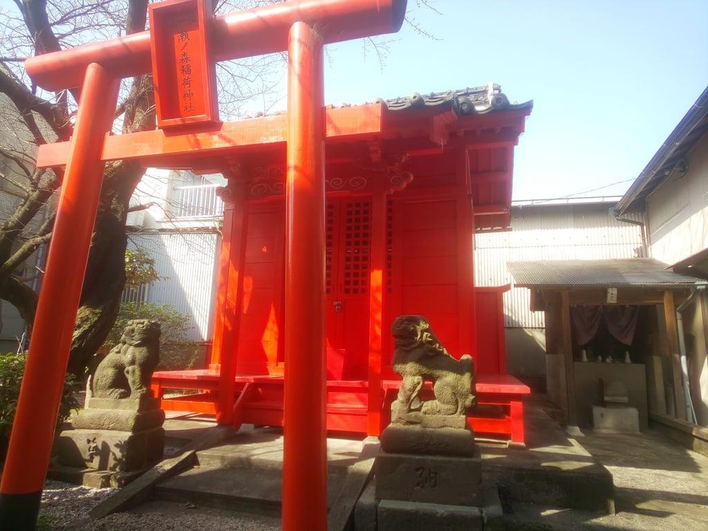 瀬ノ森稲荷神社(福岡県)