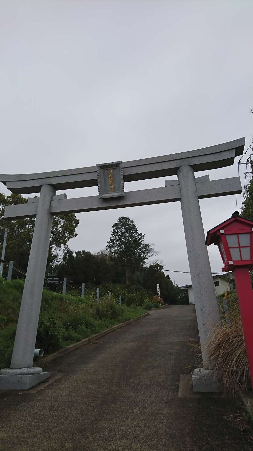 河内阿蘇神社の鳥居