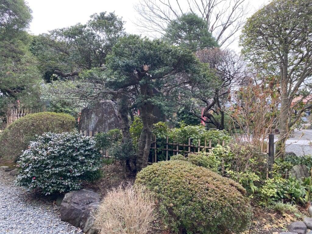 安養寺の庭園