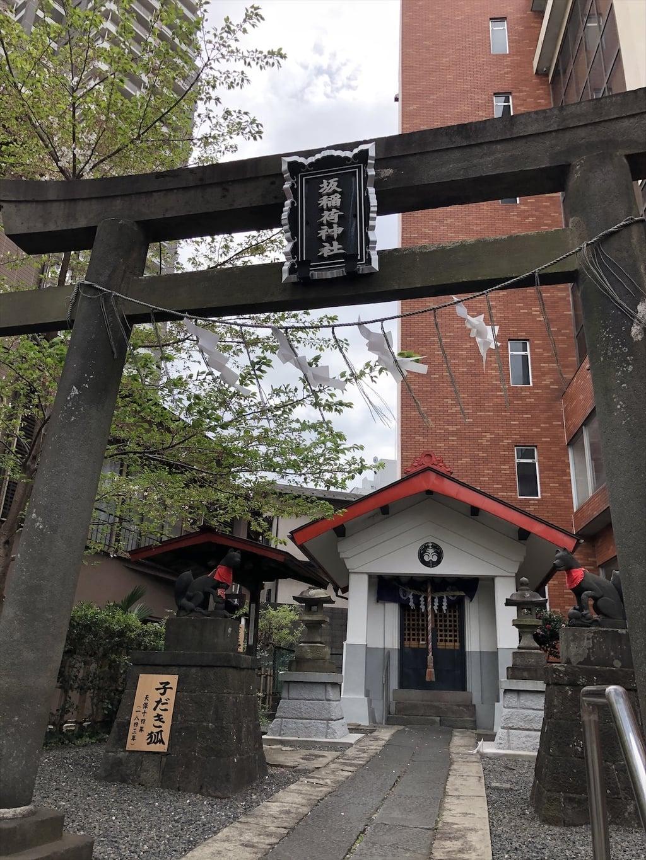 坂稲荷神社の鳥居