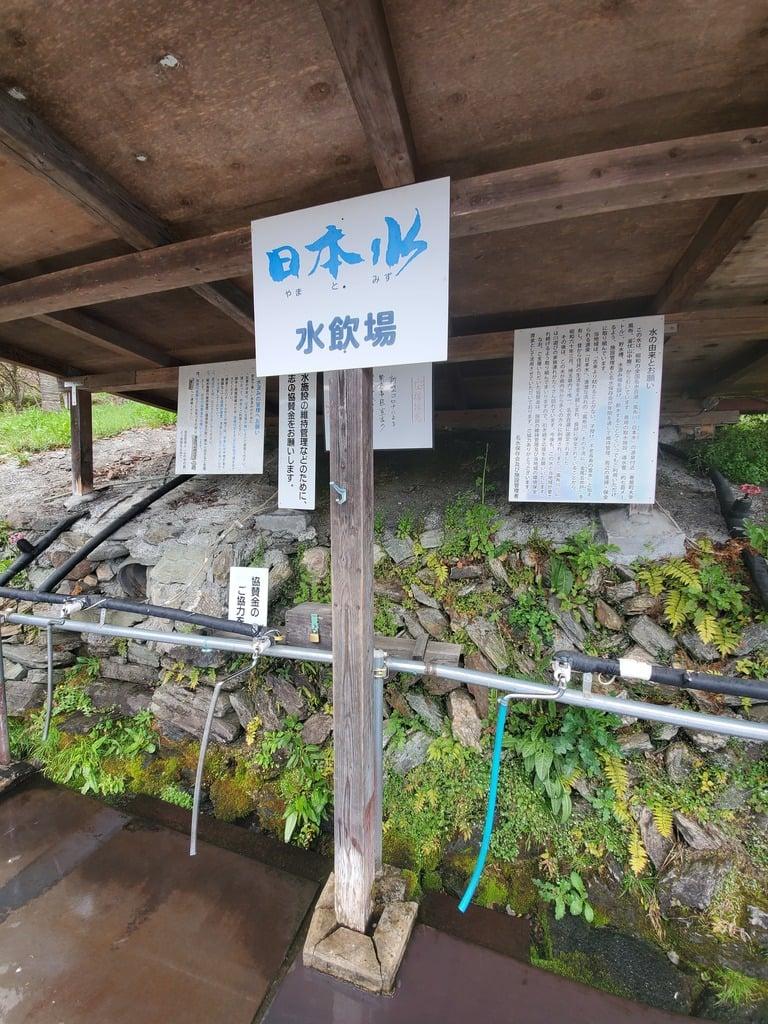 釜山神社の手水