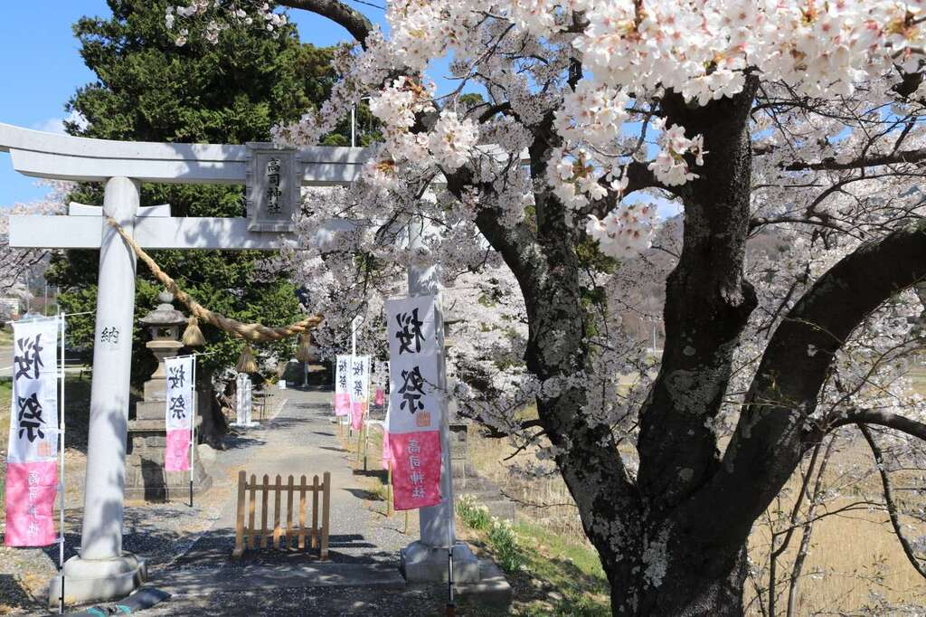 高司神社〜むすびの神の鎮まる社〜の景色