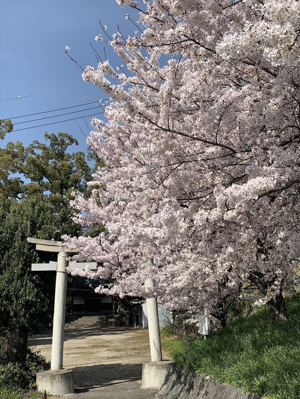 春日神社(大阪府)