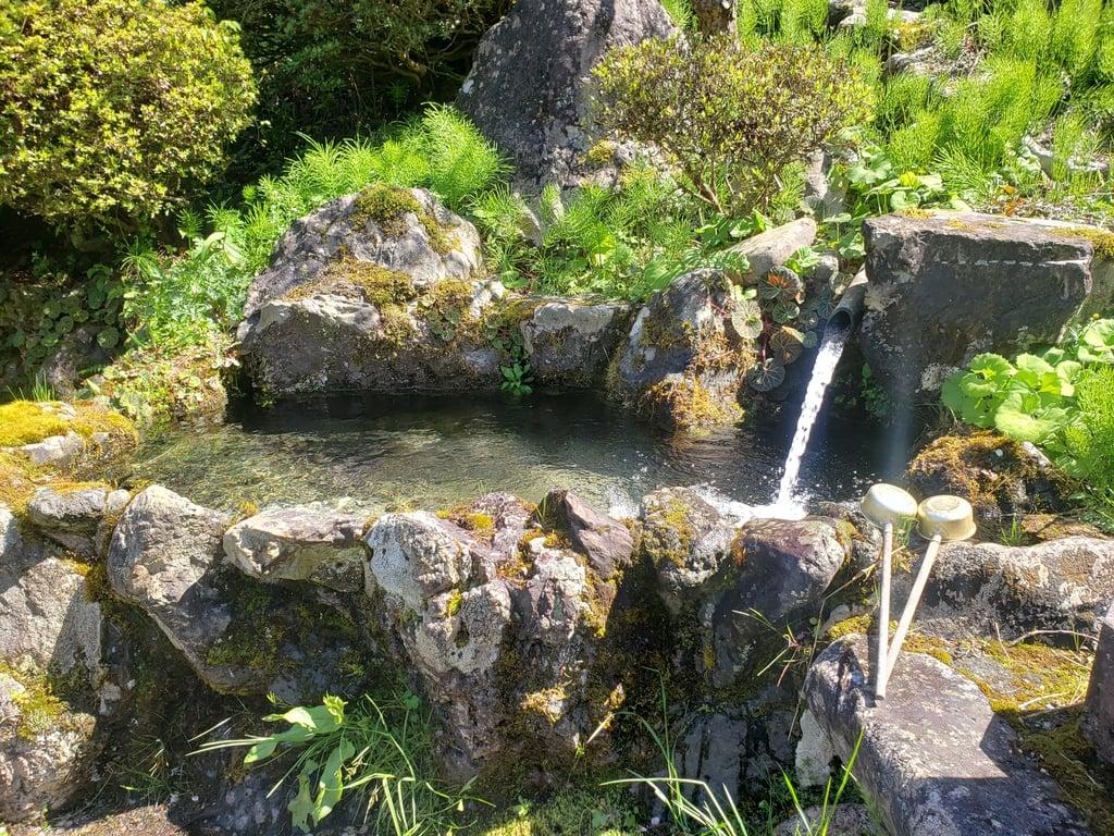 天徳寺の手水