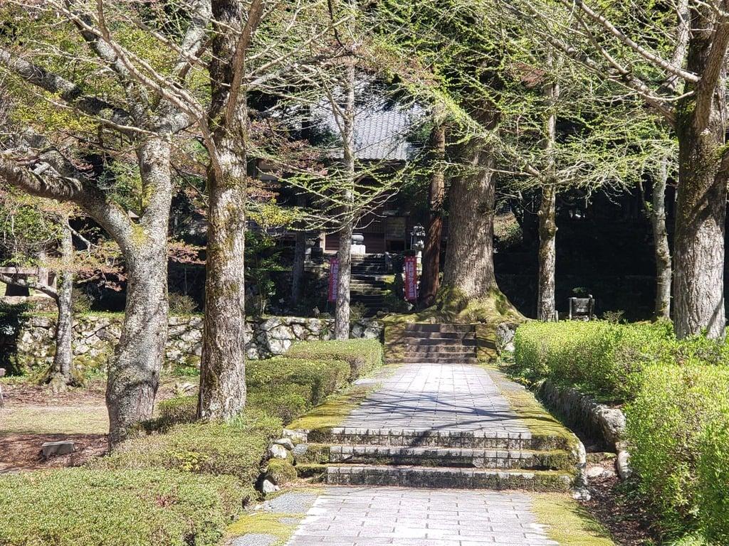 天徳寺の建物その他