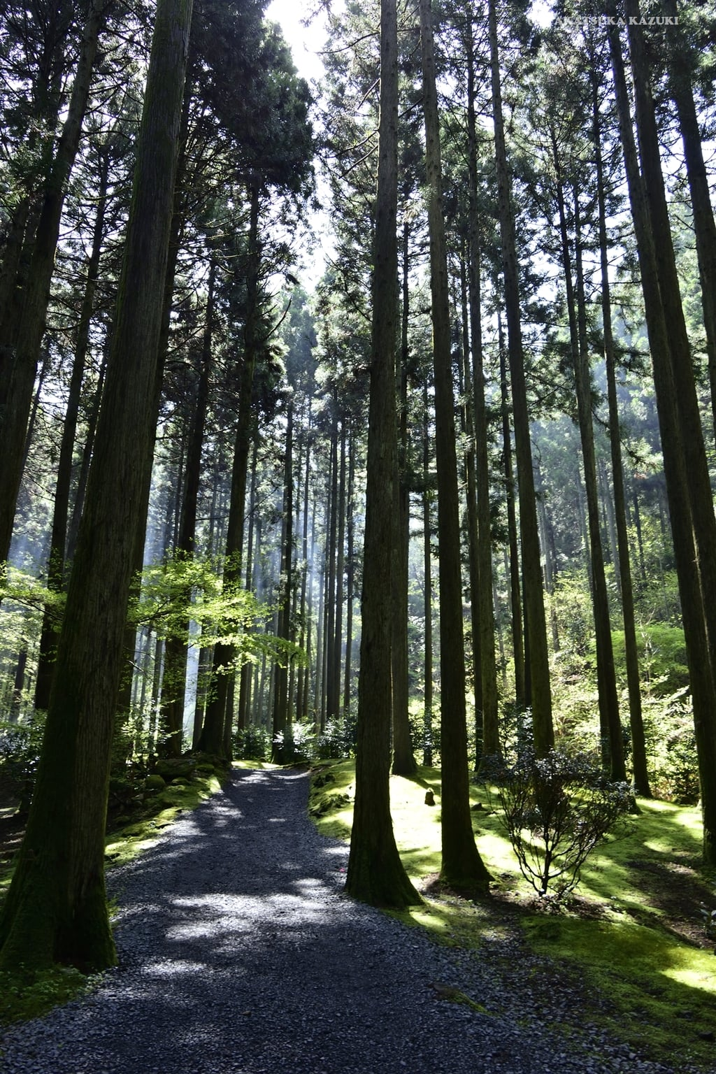 御岩神社(茨城県)