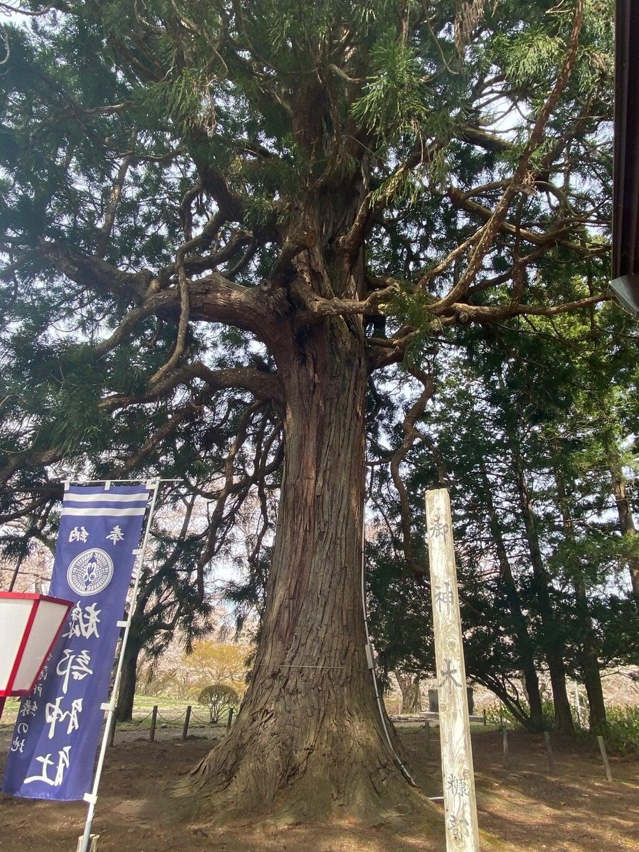 糠部神社の自然