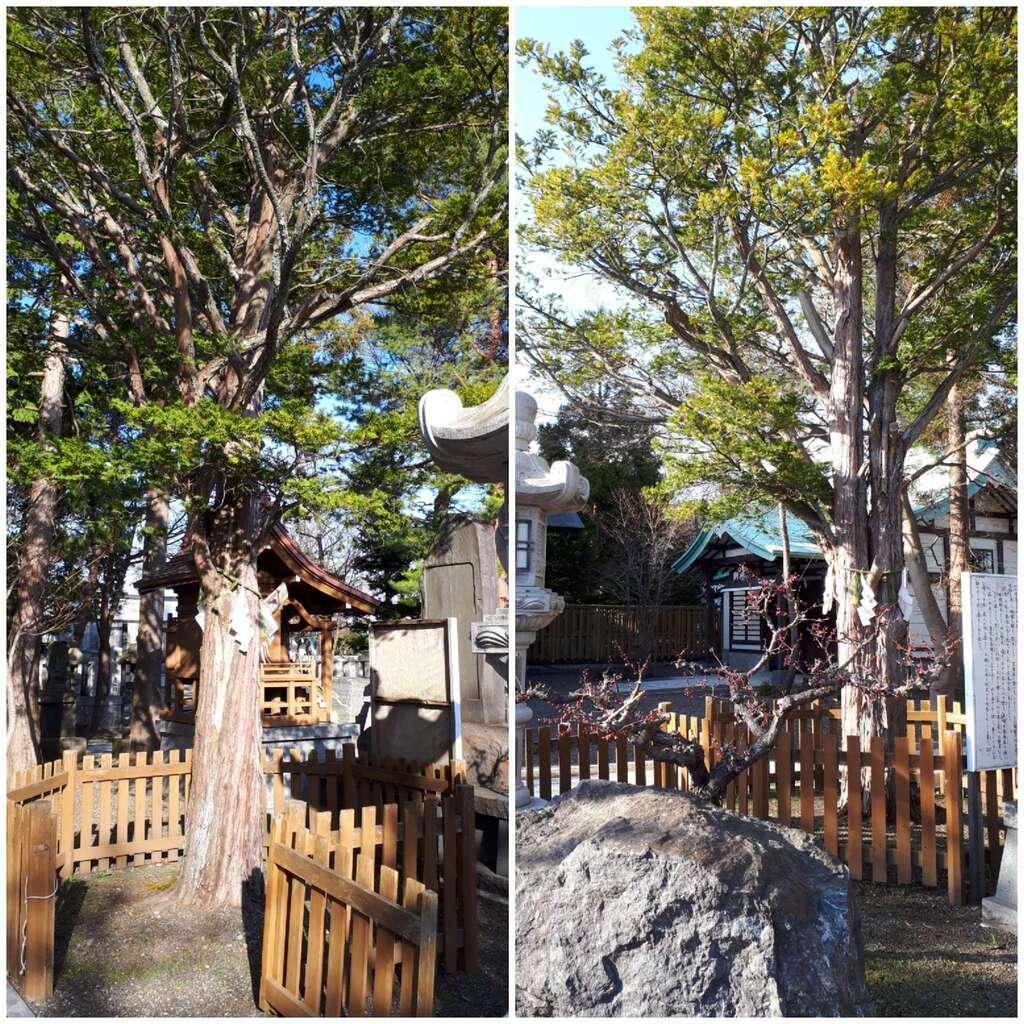 刈田神社の末社
