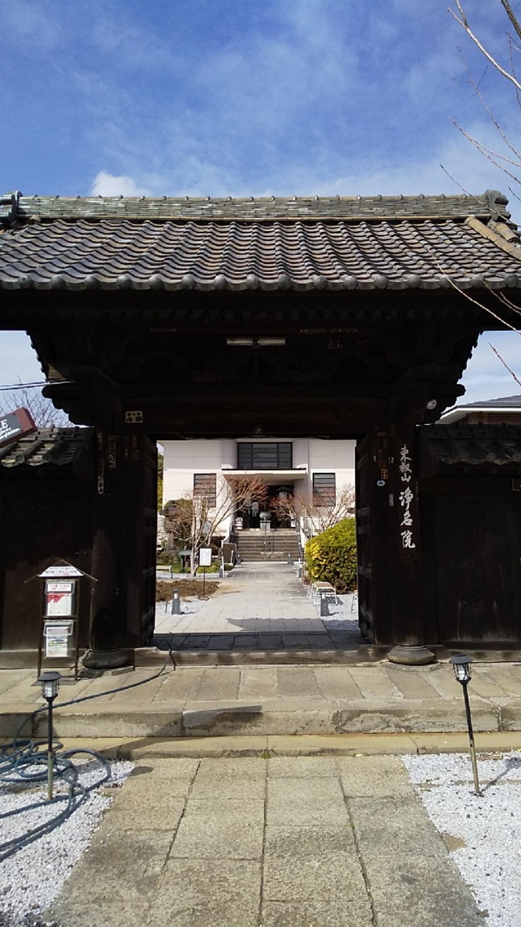 浄名院の山門