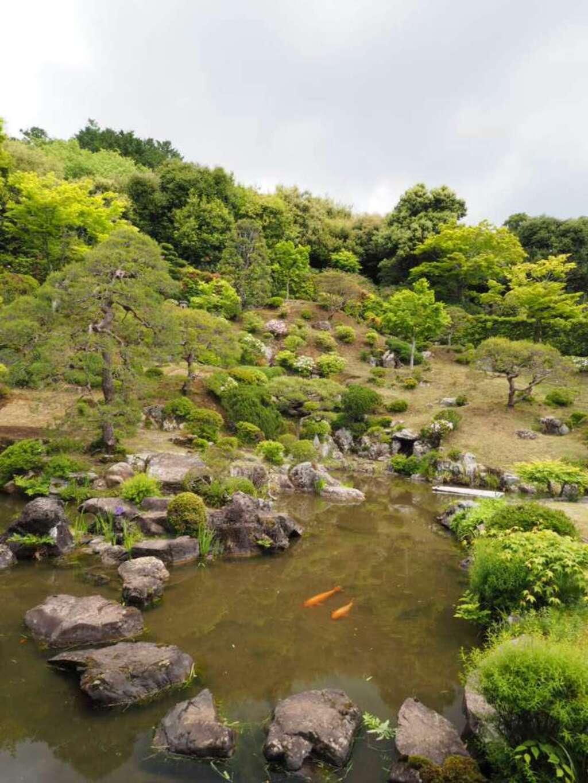 能仁寺の庭園