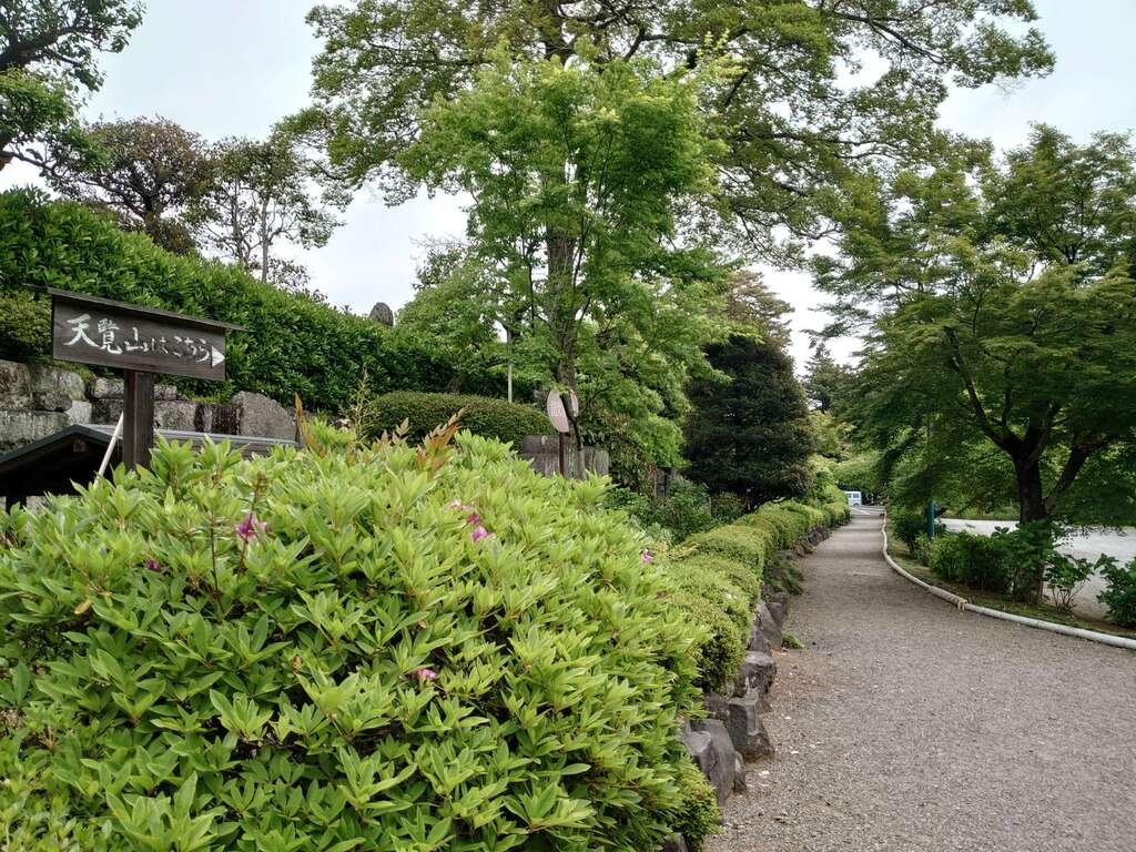 能仁寺の自然
