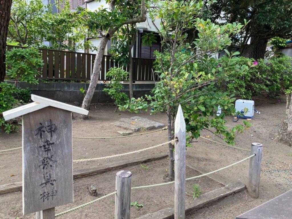 片瀬諏訪神社の自然