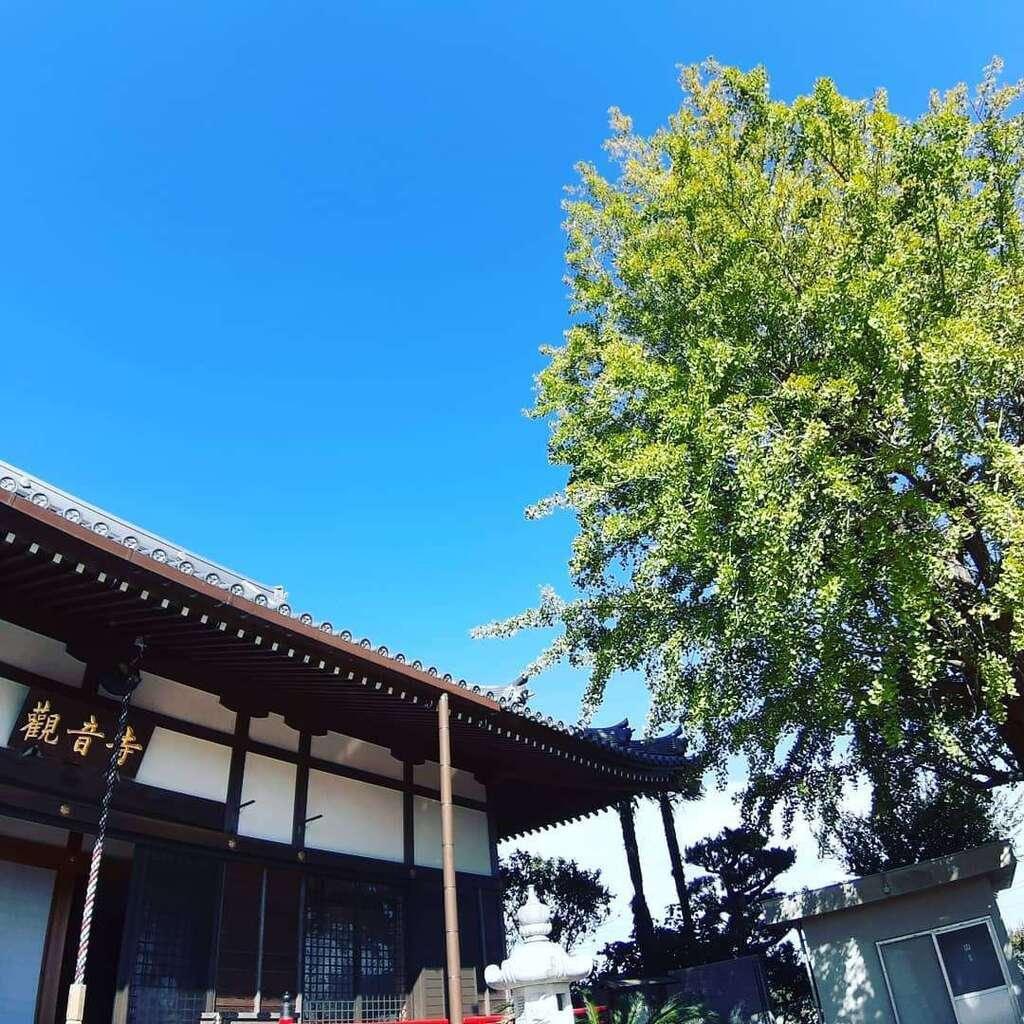 法話と天井絵の寺 觀音寺の庭園