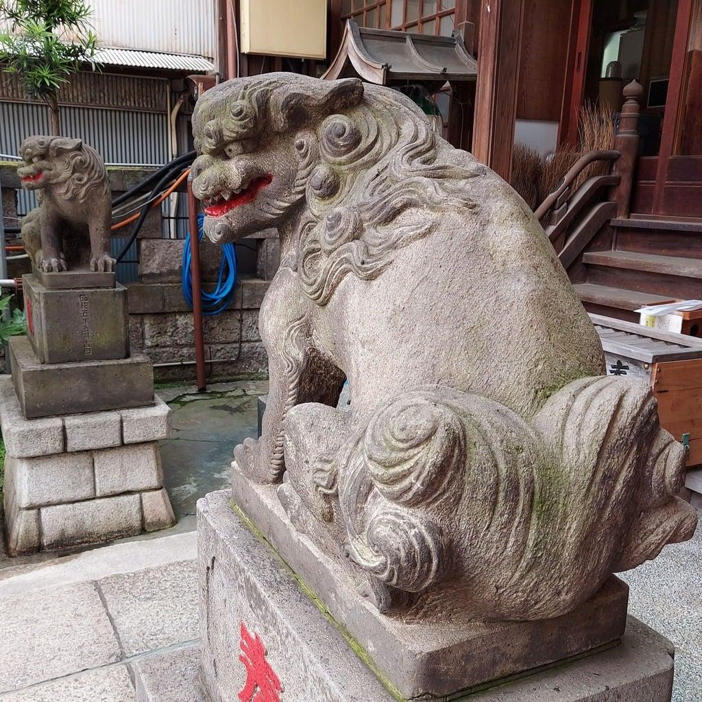 秋葉神社の狛犬