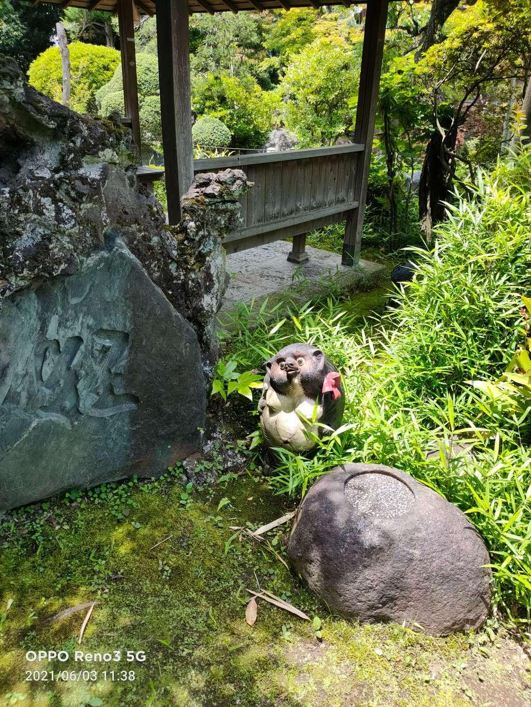 多聞寺の狛犬