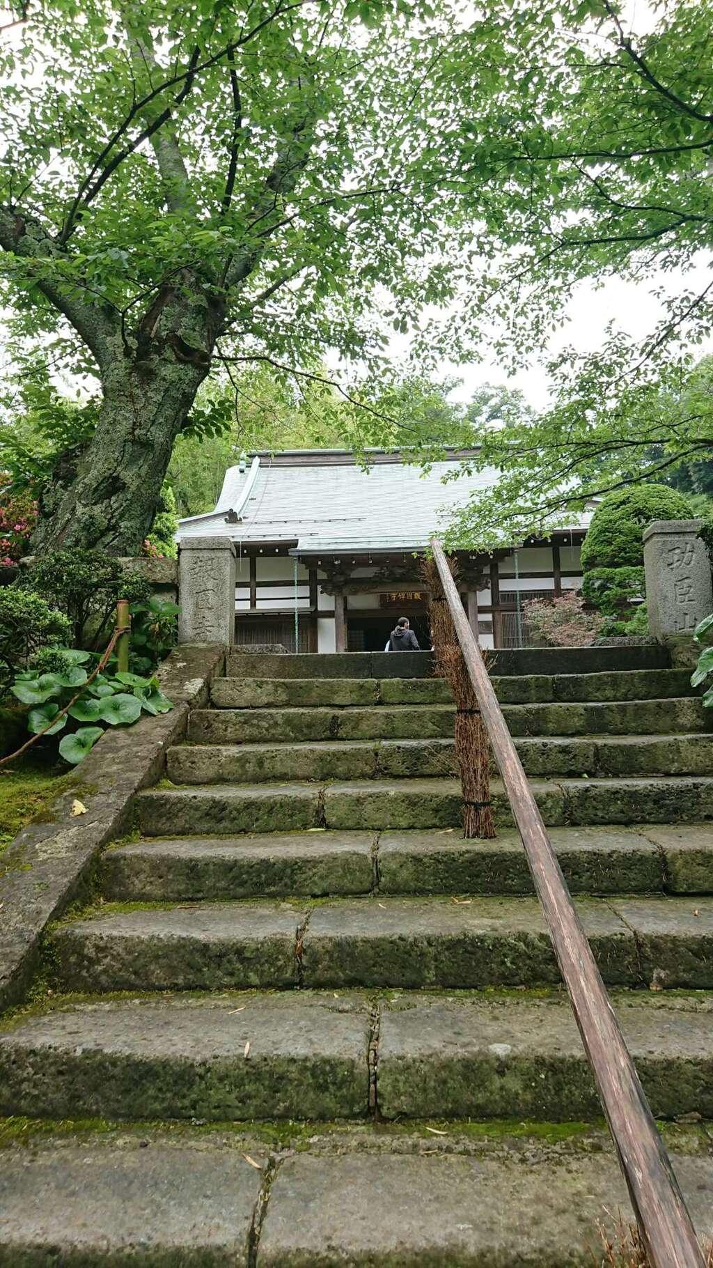 報国寺(神奈川県)