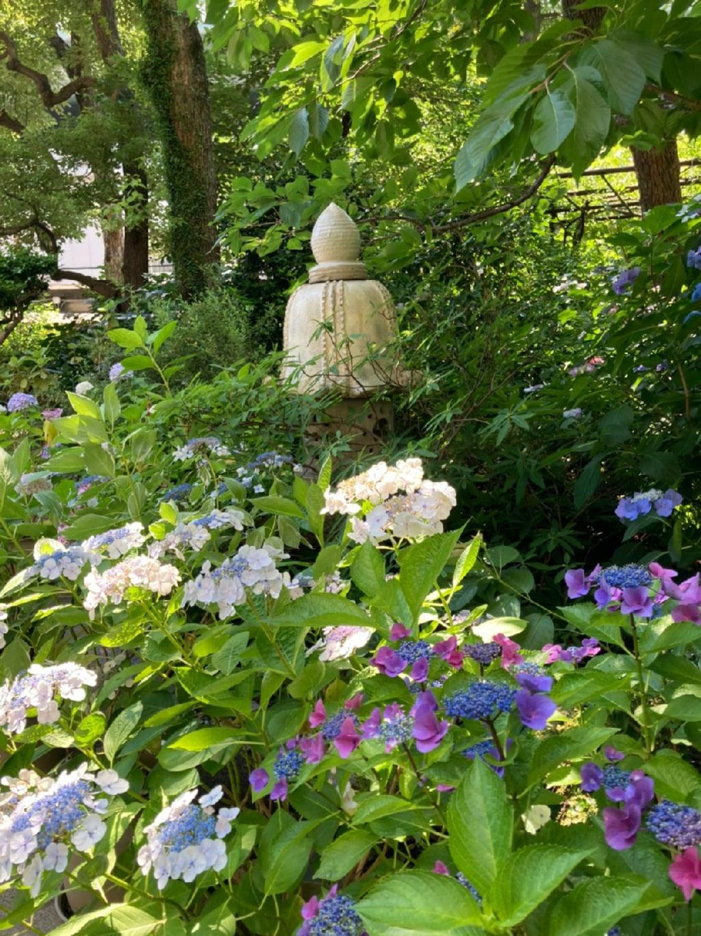 坐摩神社の自然