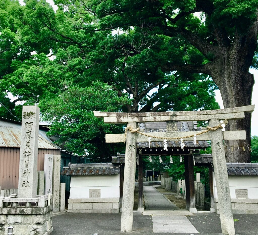 阿麻美許曽神社の鳥居
