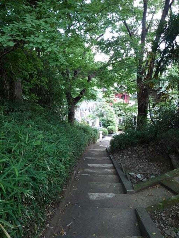 妙光院の庭園
